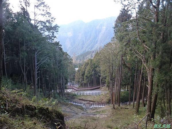 水山巨木20140125(51)