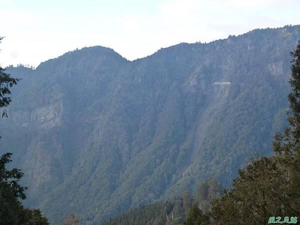 水山巨木20140125(52)