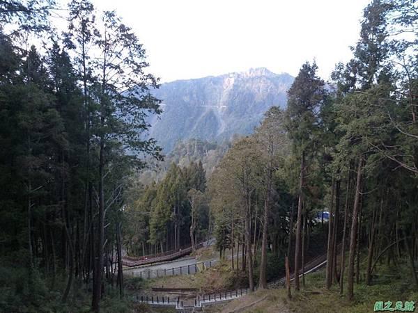 水山巨木20140125(54)