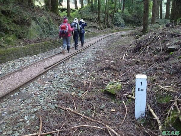 水山巨木20140125(56)