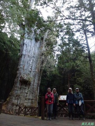 水山巨木20140125(65)