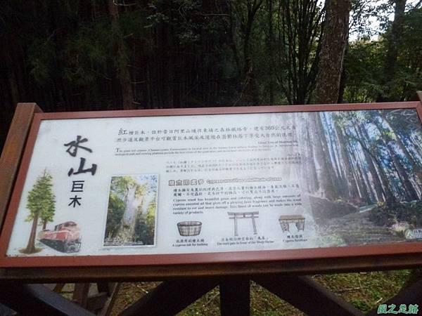 水山巨木20140125(71)