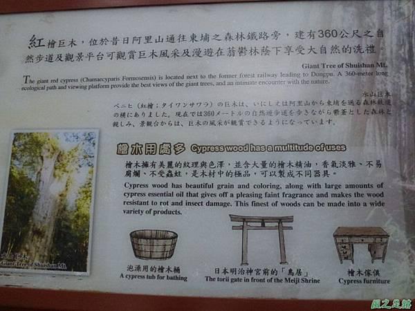 水山巨木20140125(73)