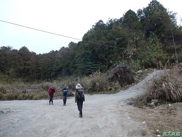 水山巨木20140125(83)