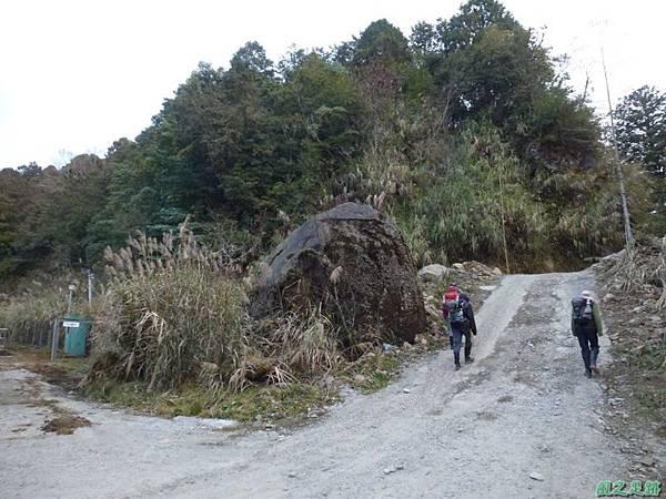 水山巨木20140125(85)