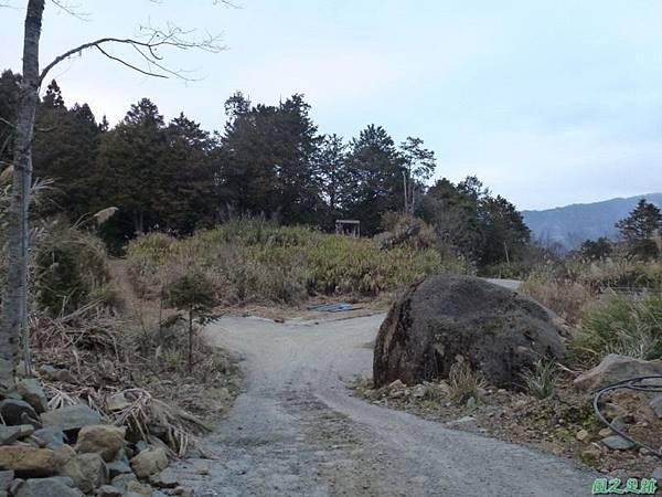 水山巨木20140125(86)