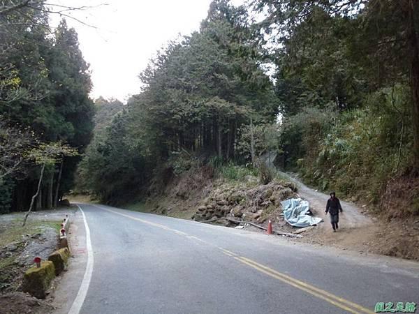 水山巨木20140125(88)