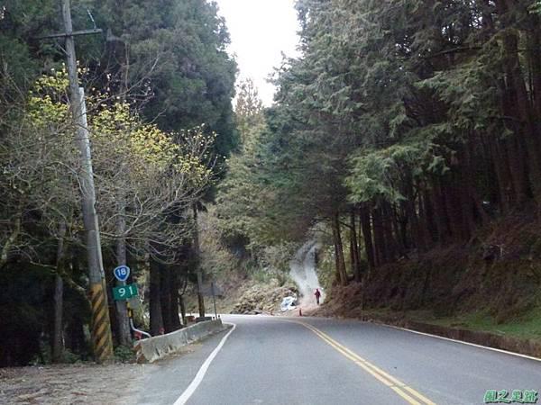 水山巨木20140125(89)