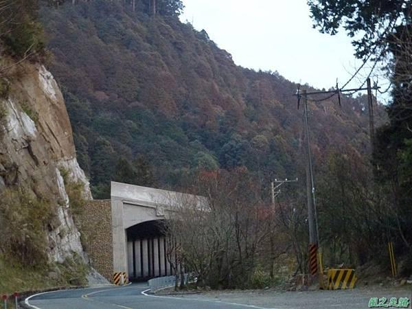 水山巨木20140125(90)