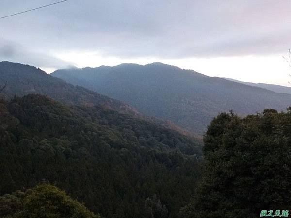 水山巨木20140125(91)