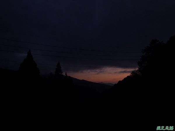 水山巨木20140125(98)