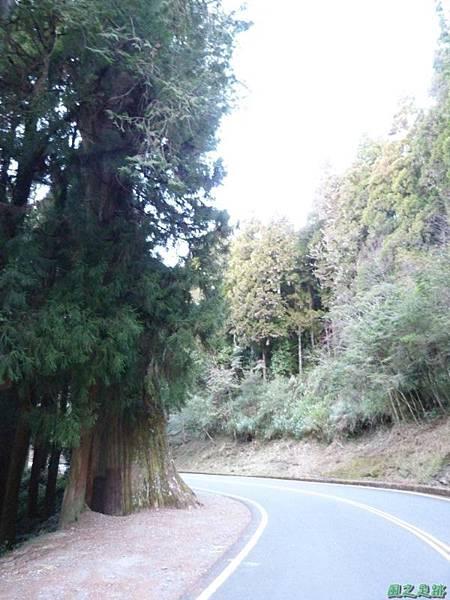 小笠原山20140125(26)