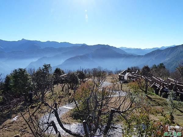 小笠原山20140125(90)