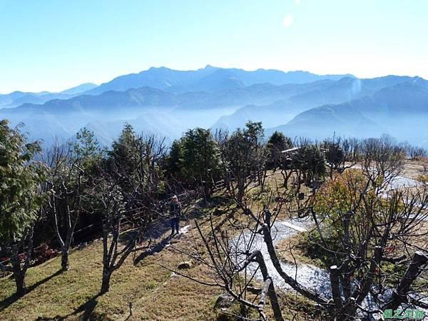 小笠原山20140125(91)