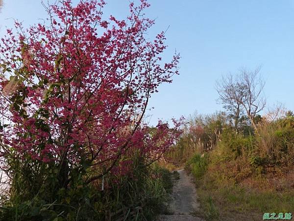 烏嘎彥山20140131(6)