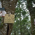 千兩山20051009(43).jpg
