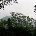 千兩山20051009(74).jpg