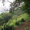 千兩山20051009(78).jpg