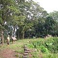 千兩山20051009(80).jpg