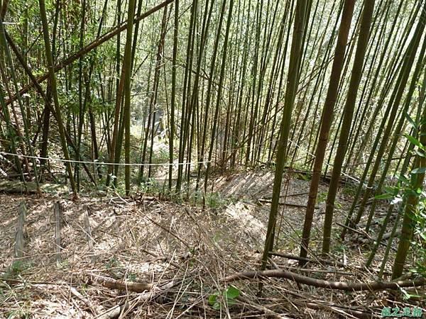 千兩山20140223(19)