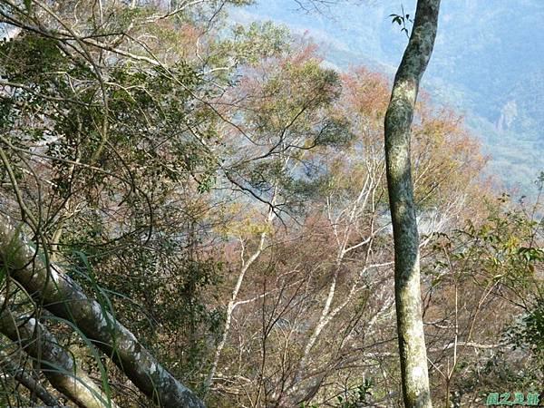 千兩山20140223(46)