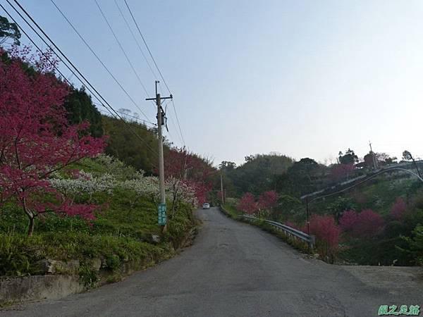 烏嘎彥山20140131(7)