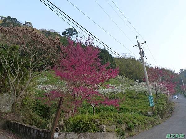烏嘎彥山20140131(8)