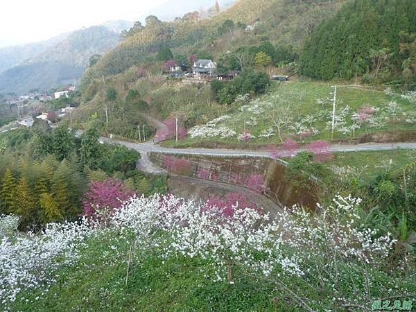烏嘎彥山20140131(9)