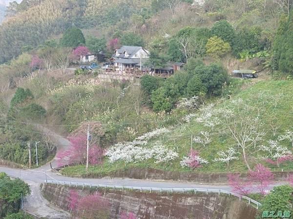 烏嘎彥山20140131(11)