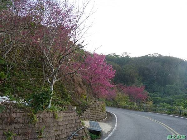 烏嘎彥山20140131(13)