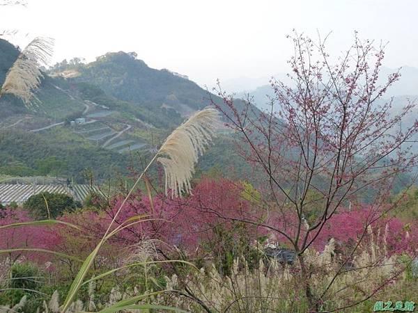 烏嘎彥山20140131(19)