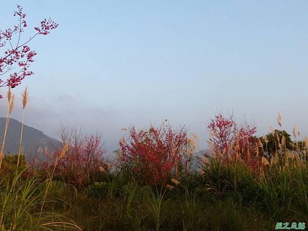 烏嘎彥山20140131(40)
