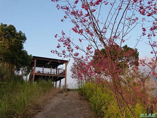 烏嘎彥山20140131(41)