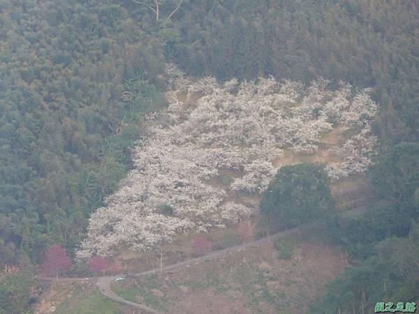 烏嘎彥山20140131(59)