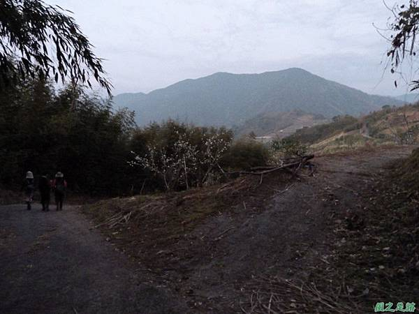 烏嘎彥山20140131(88)