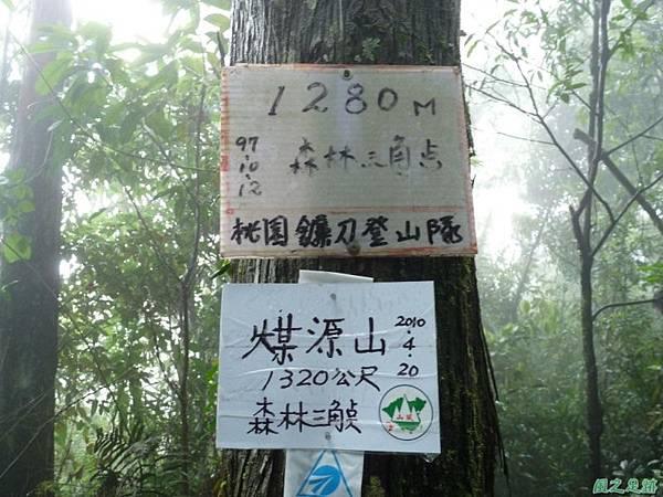 一葉罈花蘭20100509(13)