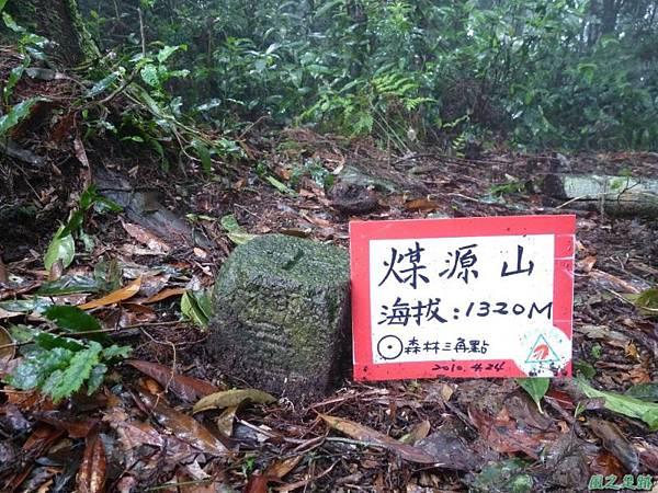 一葉罈花蘭20100509(14)