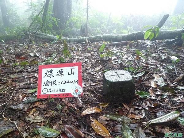 一葉罈花蘭20100509(15)