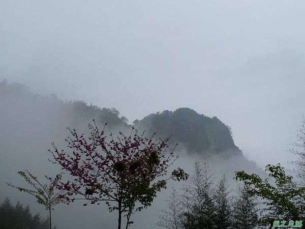 細道邦山20100206(1)
