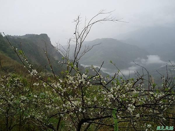 細道邦山20100206(21)
