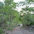 泰安溫泉風景區20140322(8).JPG