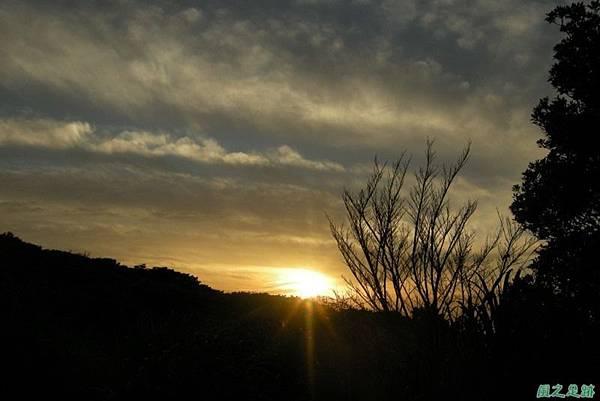20110424陽明山竹雞(2)