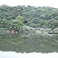 20110424陽明山竹雞(7)