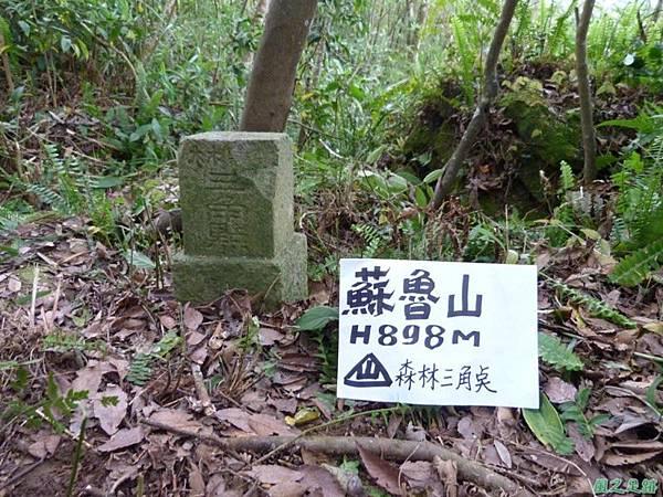 蘇魯山20140329 (6)