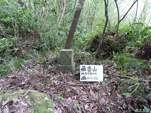蘇魯山20140329(48)