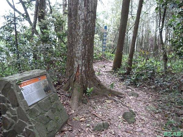 二本松山20140329(43)