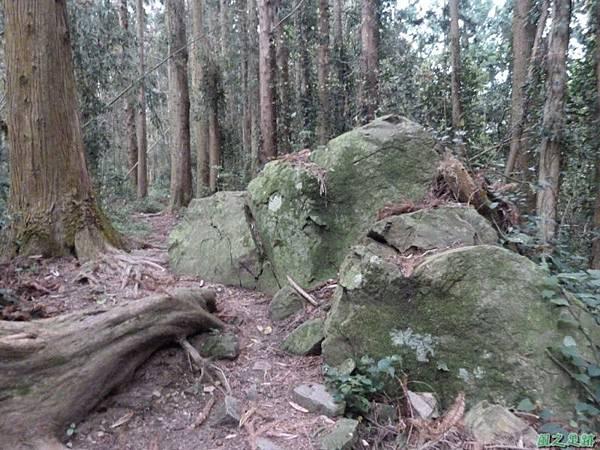 二本松山20140329(52)
