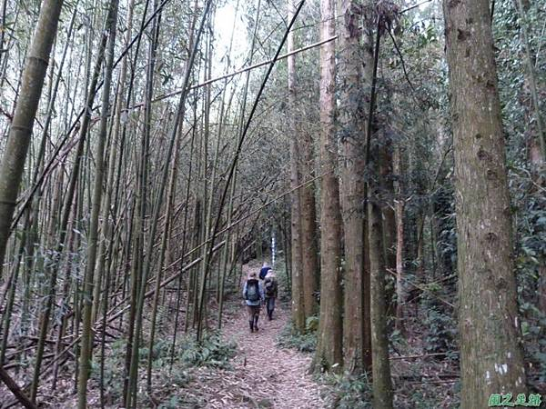 二本松山20140329(55)