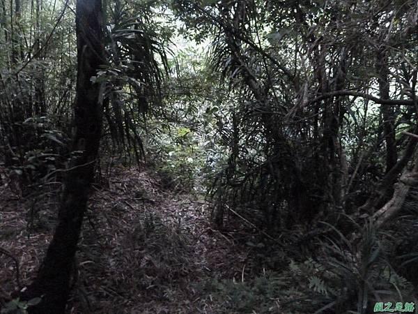 東北角山行20140419(257)