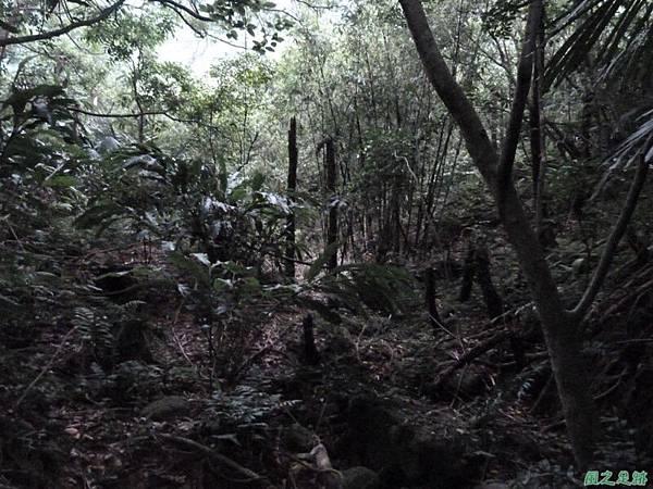 東北角山行20140419(259)